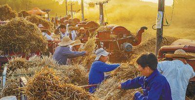 丰收季 支农忙
