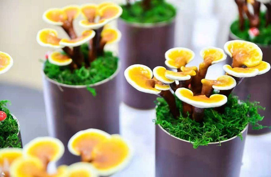 鹿角灵芝、黄金菇、黑虎掌菌……多种珍稀食用菌、野生菌亮相菌博会  你认得哪些?