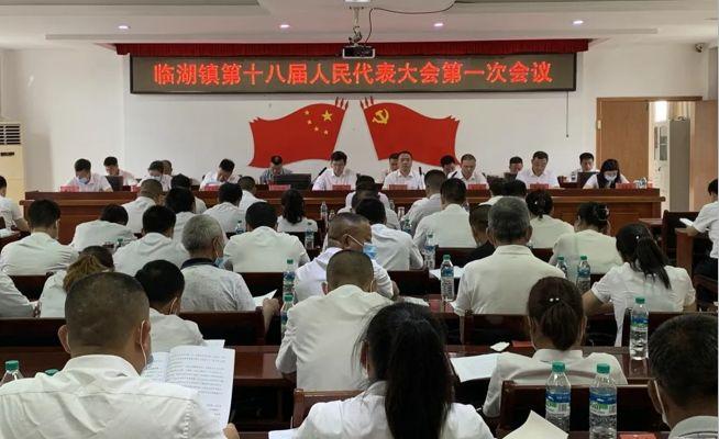 中实社江西:临湖镇第十八届人民代表大会第一次会议成功召开